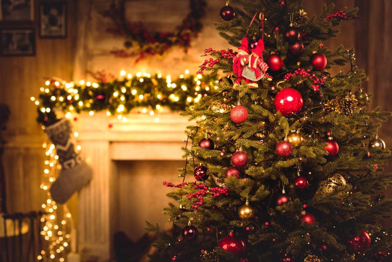 Betriebsurlaub:  Weihnachten / Neujahr